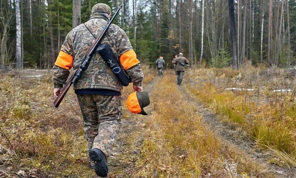 Основы безопасной охоты