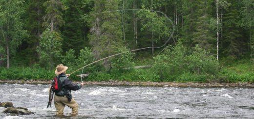 Рыболовные туры в Карелию