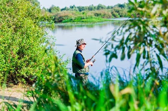 На какие наживки ловить рыбу в жару?