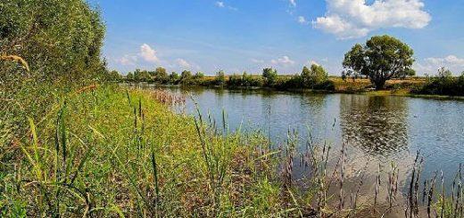 Где поймать рыбу в Казани?