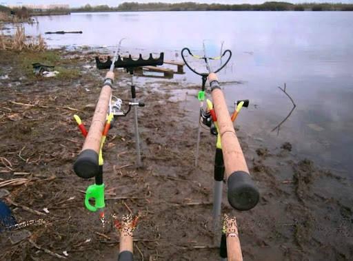 рыбалка на фидер осенью