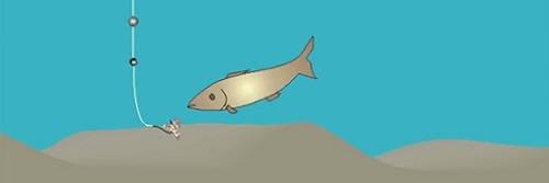 На Какой Глубине Искать Рыбу