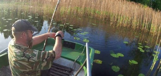 Рыбалка БЕЗ прикормки
