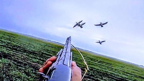 Охота на утку в чистом поле