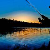 Ночная рыбалка на Дунае