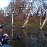 Рыбалка на спиннинг в небольшом затоне